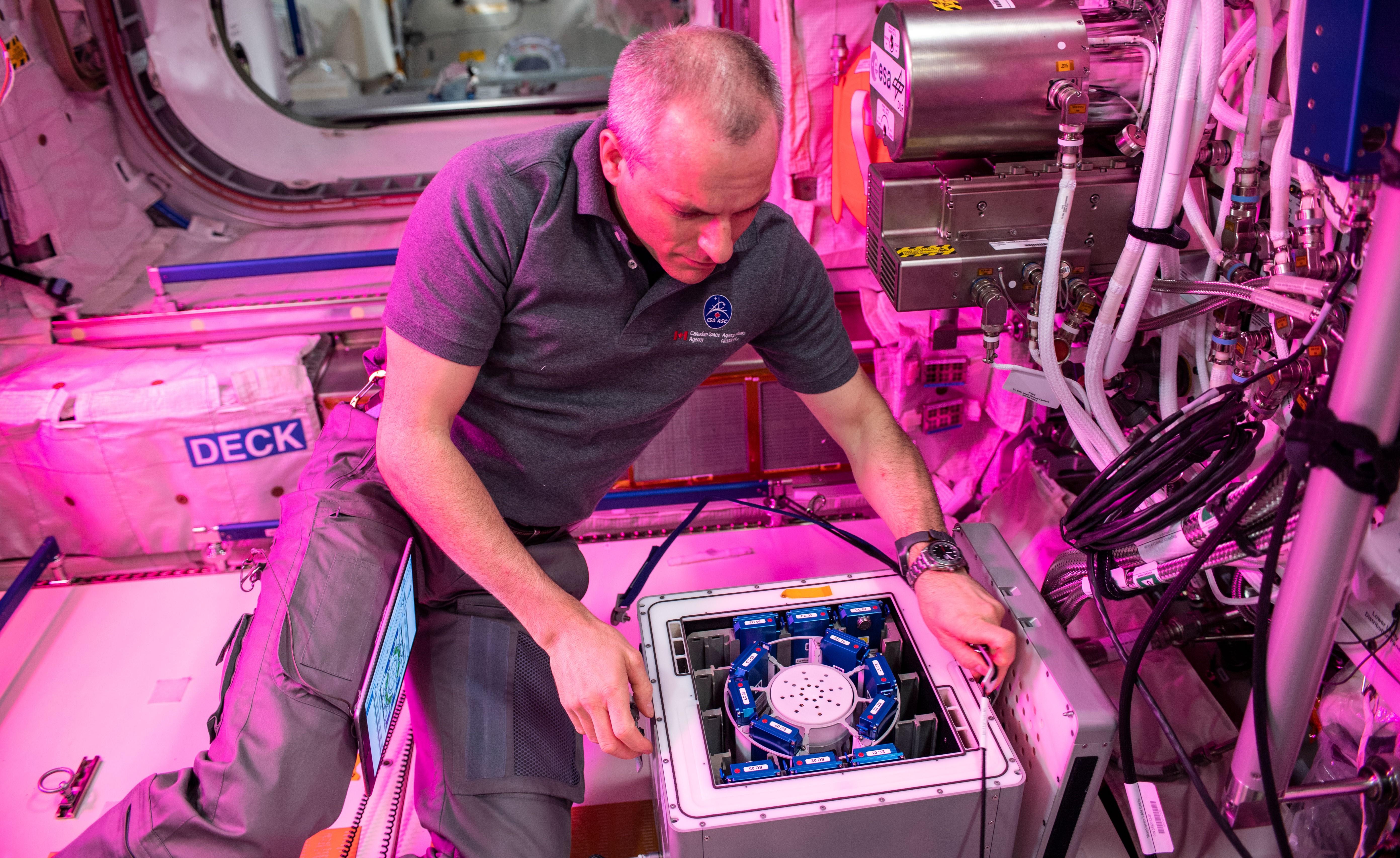 Forsøk med nanopartikler som antioksidanter settes inn i en inkubator på romstasjonen. Foto: NASA