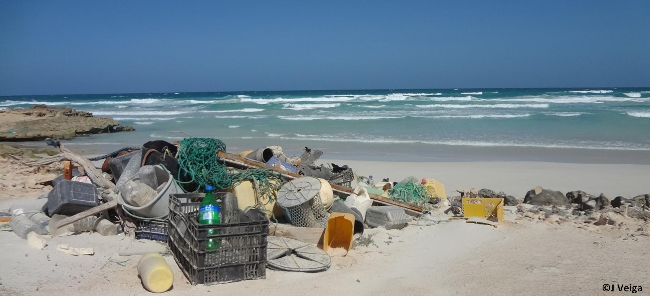 10 millioner tonn plast kastes i havet hvert år. Plastsøppel finnes i alle hav fra ekvator til polene.