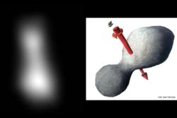 Fotografi (t.v.) og illustrasjon (t.h.) av Ultima Thule og dens rotasjon. Bilde: NASA/JHUAPL/SwRI/J. T. Keane