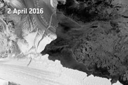 Isbremmen Nansen (til venstre i bildet) i Øst-Antarktis og sprekken (øverst på bildet) som delte isbremmen på tvers 7. april 2016. Her sett av Sentinel-1A den 2. april 2016. Foto: ESA