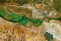 Satellittbilde av Okavango-elven mellom Namibia og Angola. Områder nær vannet vises i grønt, landsbyer og bebyggelse i hvitt og jordsmonn i rødt. Sirklene er runde åkrer på cirka 600 meter i diameter. Foto: KARI/ESA
