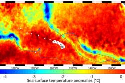 Temperaturen i havoverflaten under dannelsen av tre tropiske orkaner i Stillehavet. De tropiske orkanene virvler opp kaldt vann fra dypet. Grafikk: Ifremer–N. Reul/ESA SMOS+STORM project and REMSS