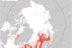Skipsdøgn for fiskebåter i Arktis fra september 2010 til september 2012 sett av AISSat-1. Grafikk: Norsk Romsenter
