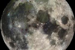 Månen sett av romsonden Galileo i 1992. Foto: NASA