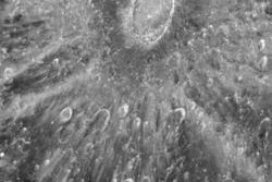 Tycho Krater på månen.