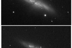 Det første bildet av SN 2014J i galaksen M82 tatt av studentene som oppdaget supernovaen. Det øverste bildet viser M82 før supernovaeksplosjonen ble synlig, det nederste bildet med supernovaen synlig og markert. Foto: UCL/ULO/S. Fossey/B. Cooke/G. Pollack/M. Wilde/T. Wright