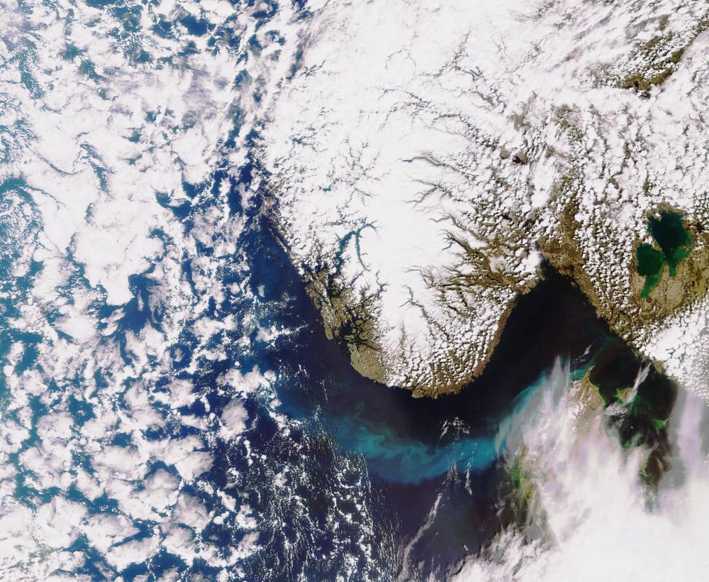 Algeoppblomstring utenfor kysten av Norge, sett av Envisat i 2010