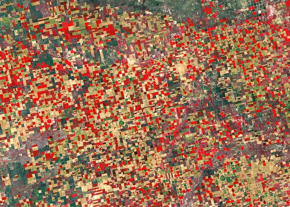 Satellittbilde av jordbruksområder i Kansas i USA tatt av Landsat. Foto: USGS/ESA