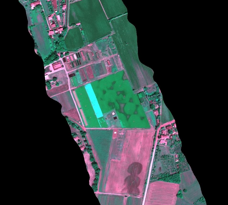 Forskningssatellitten FLEX måler fotosyntese uansett plantenes farge. Her gløder gule soyaplanter blant grønne. Foto: FZ/Juelich