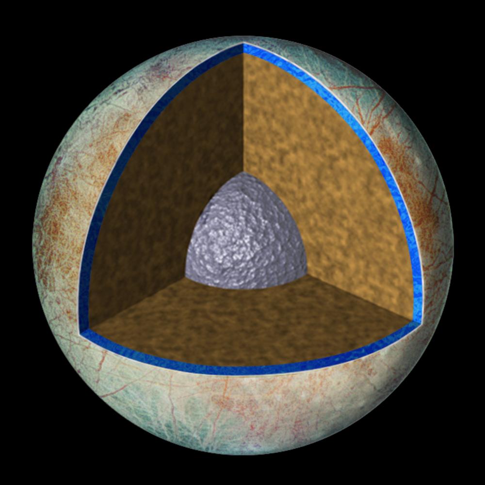 Europa har et tykt skall av is ytterst, deretter et hav av flytende vann (blått), et indre av stein (brunt) og en kjerne av metall (grått). Grafikk: NASA/JPL