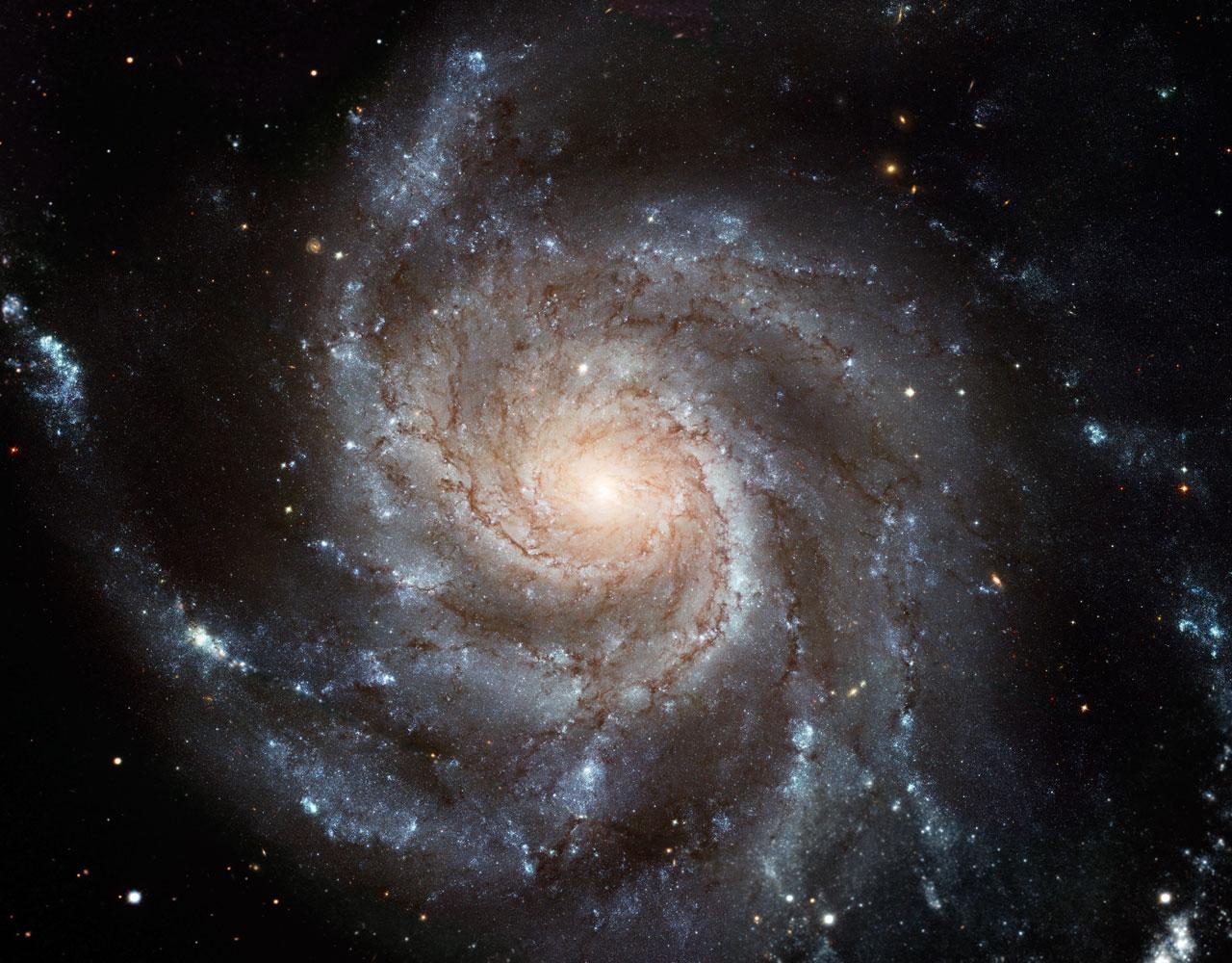 Spiralgalaksen M101 sett av Hubble. Foto: NASA/ESA