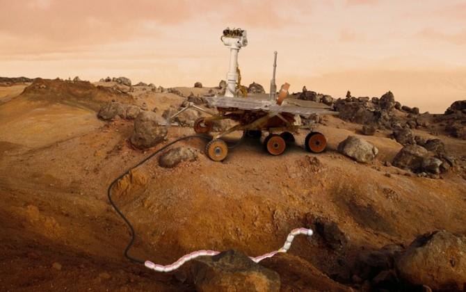I fremtiden kan kanskje rovere få selskap med slangeroboter på Mars. Slangeroboter kommer seg frem dit andre roboter ikke når. Illustrasjon: RobotNOR/SERPEX/NTNU/SINTEF